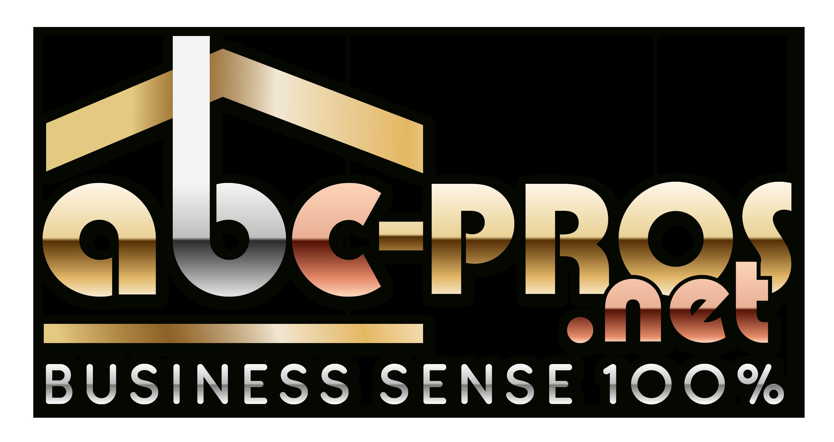 ABC PROFESSIONAL NETWORK LLC